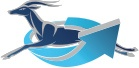 Imapal truck sales logo-footer